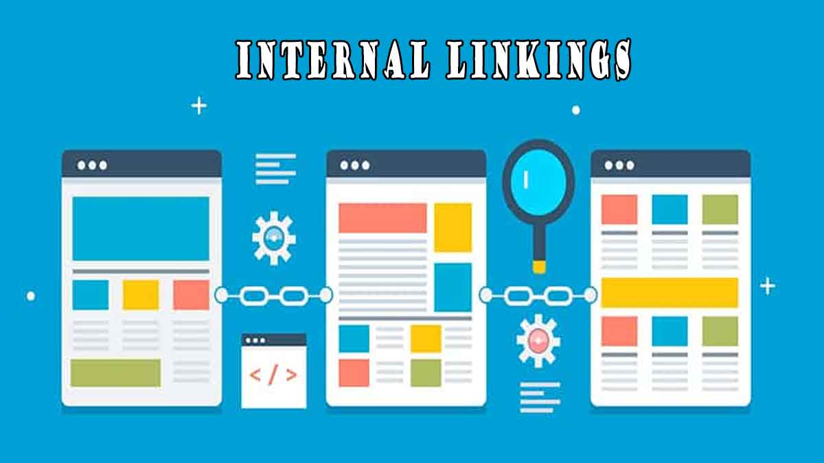Why the Site Structure and Internal Linkings are important for SEO